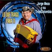Lo Que Traigo para Ti by Jorge Meza Y Su Tropicolombia
