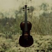 Ganglion by Saltillo
