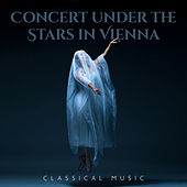 Concert under the Stars in Vienna – Classical Music de Various Artists