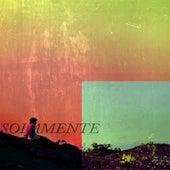 Instrumental Works de Solamente