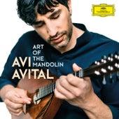 Scarlatti: Sonata in D Minor, Kk. 89: III. Allegro (Arr. for Mandolin and Basso continuo) by Avi Avital