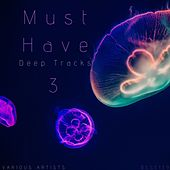 Must Have Deep Tracks, Vol.3 de Various Artists