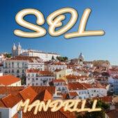 Sol de Mandrill