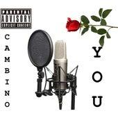 You von Cam Bino