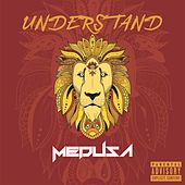 Understand by Medusa