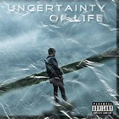Uncertainty of Life by Silk