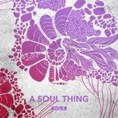 A Soul Thing, Vol. 8 de Various Artists
