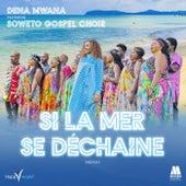Si la mer se déchaîne (Remix) von Dena Mwana