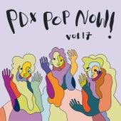 PDX Pop Now! Compilation, Vol. 17 de Various Artists