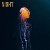 Night by Trouble Sleeping Music Universe