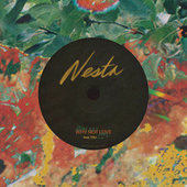 Why Not Love by Nesta
