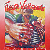 Fiesta Vallenata vol. 18 1992 von Fiesta Vallenata