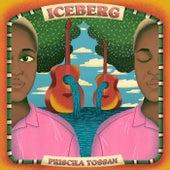 Iceberg de Priscila Tossan