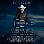 Asi Es La Vida by Jose Gastelum Y Su Impacto De Sinaloa