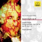 The Auryn Series, Vol. 26 von Auryn-Quartet