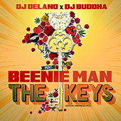 The Keys (feat. Beenie Man) [Steve Andreas Mix] by DJ Delano