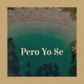 Pero Yo Se by Rafael Farina, Gene Pitney, Los Alegres de Teran, Astor Piazzolla, Mickey Gilley, Azucena Maizani, Charlie Rich, Jim Reeves, Los Panchos