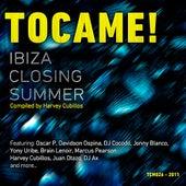 Ibiza Closing Summer by Various Artists
