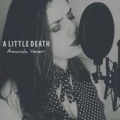 A Little Death (Cover) by Amanda Vèniri