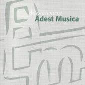 Adestatement by Adest Musica