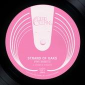 Pink Rabbits b/w Plymouth (acoustic) de Strand Of Oaks