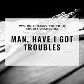 Man, Have I Got Troubles by Wynonie Harris