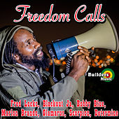 Freedom Calls by Various Artists
