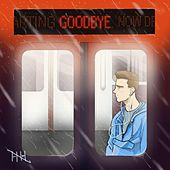Goodbye by RC