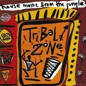 Tribal Zone de Various Artists