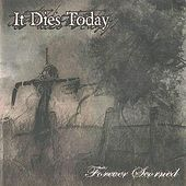 Forever Scorned by It Dies Today