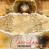 Corridos Encargados by Albert Duarte y sus Guerreros