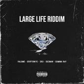 LARGE LIFE RIDDIM de Various Artists
