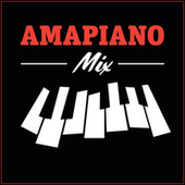 Amapiano Mix by Various Artists