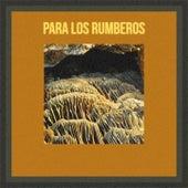Para Los Rumberos by Pedro Infante, Mickey Gilley, Pototo Y Filomeno, La Paquera de Jerez, Bola De Nieve, Shelley Fabares, Orlando Contreras, Los Panchos
