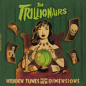 Hidden Tunes from New Dimensions de The Trillionairs