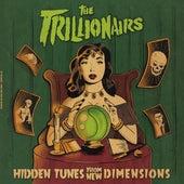 Hidden Tunes from New Dimensions von The Trillionairs