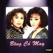 Bong Co May de Various Artists