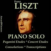 Liszt, Vol. 5: Paganini Etudes - Consolations - Transcriptions (AwardWinners) by Various Artists