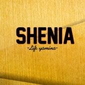 Life yamina by Shenia