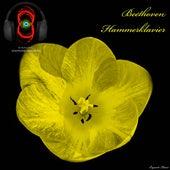 Piano Sonata no. 29 in B flat major 'Hammerklavier', Op. 106 - Ludwig van Beethoven (3D Sound - Headphones mandatory for the best experience) de Ludwig van Beethoven
