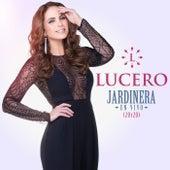 Jardinera (En Vivo / 20y20) von Lucero
