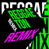 Reggaeton Remix de Various Artists