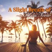 A Slight Breath of Bossa Nova by Various Artists