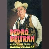 Las Calabazas de Pedro Beltran