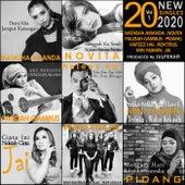 20 New Singles 2020 Volume 1 von Various Artists
