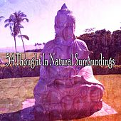 54 Thought in Natural Surroundings by Classical Study Music (1)