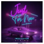 Just For Now (VIP Mix) de Freischwimmer