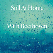 Still At Home With Beethoven von Yehudi Menuhin
