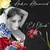 El Olvido von Andrea Almonacid