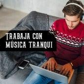 Trabaja con música tranqui von Various Artists